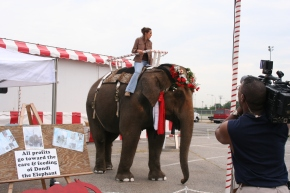 Dondi the Elephant during an event at the Nassau Coliseum.